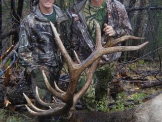 Idaho Unit 26 Bull Elk - Idaho Wilderness Company - Outfitter Steve Zettel