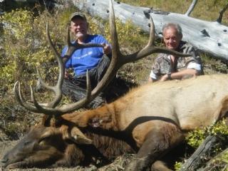 Royal Idaho Unit 27 Bull Elk - Idaho Wilderness Company - Frank Church River of No Return Wilderness Area