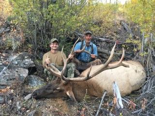 Bull Elk taken in Idaho Unit 26 - Frank Church Wilderness - Outfitter Steve Zettel